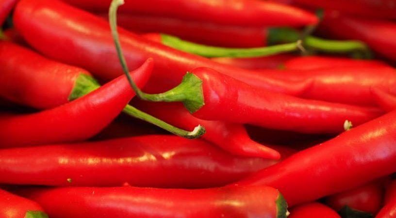 chili-red-sharp-spice-42259